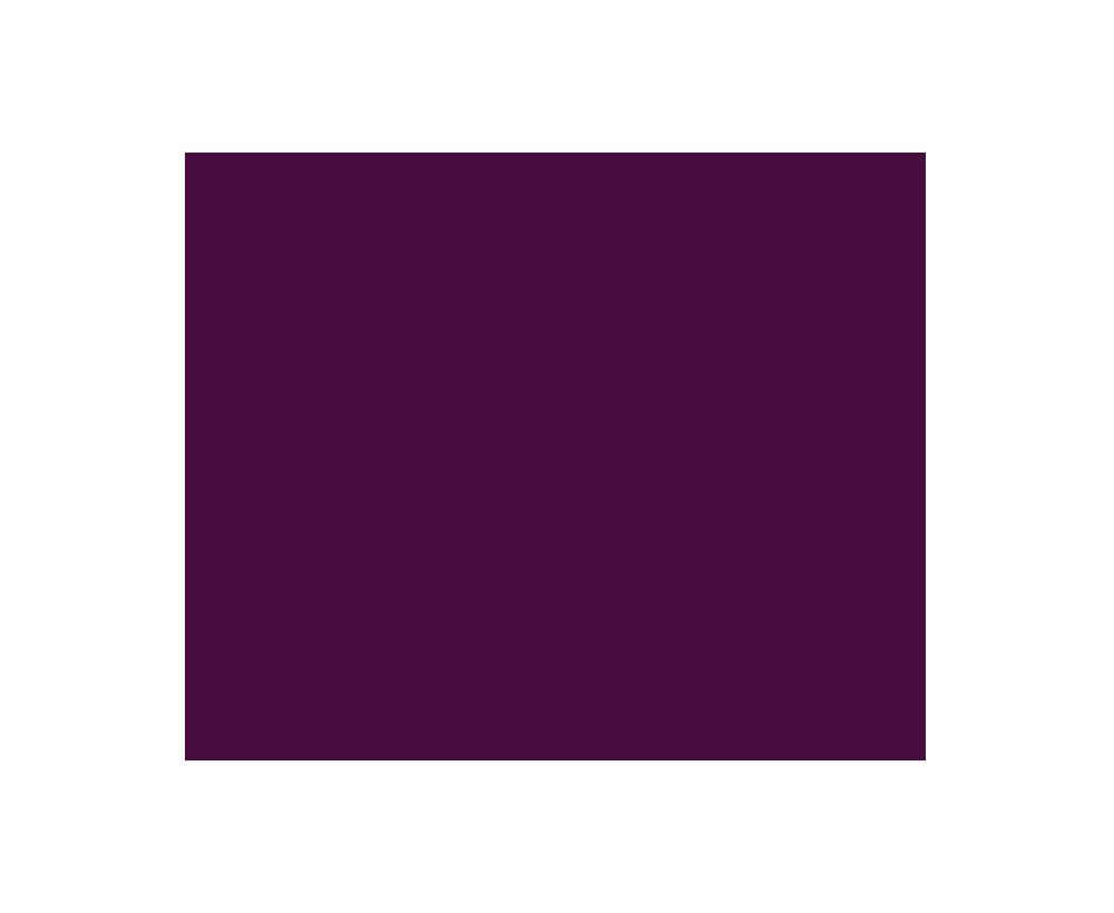 Client circle plum 2